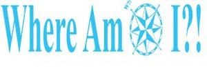 WAI-logo21-300x97
